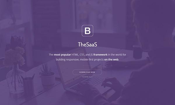 TheSaaS — Responsive Bootstrap SaaS, Startup & WebApp Template
